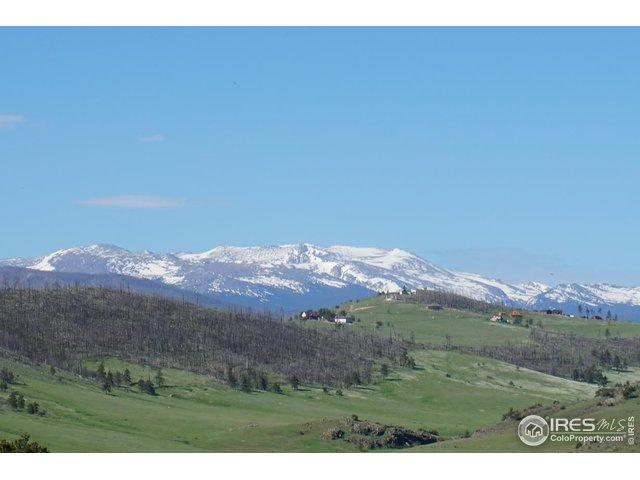 0 Deer Meadow Way Dr, Livermore, CO 80536 (MLS #885915) :: 8z Real Estate