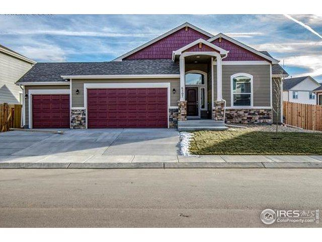 1804 Ruddlesway, Windsor, CO 80550 (#886031) :: The Dixon Group