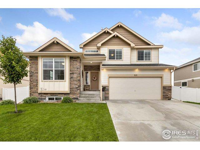 215 Castle Dr, Severance, CO 80550 (MLS #886100) :: Bliss Realty Group
