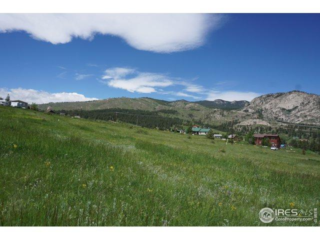 650 Snow Top Dr, Drake, CO 80515 (MLS #886151) :: J2 Real Estate Group at Remax Alliance
