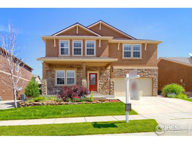 840 Fire Rock Pl, Colorado Springs, CO 80921 (MLS #886755) :: Tracy's Team