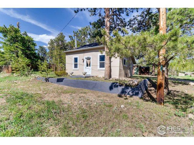 255 S Jackson St, Nederland, CO 80466 (#886995) :: The Peak Properties Group