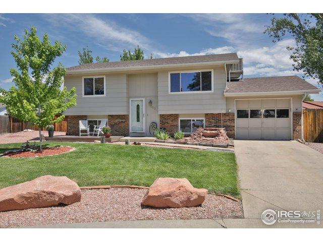 807 Table Mountain Ct, Windsor, CO 80550 (MLS #887211) :: Tracy's Team