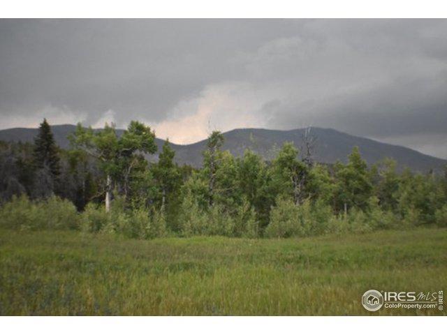 0 Buckhorn Rd, Bellvue, CO 80512 (MLS #887436) :: 8z Real Estate