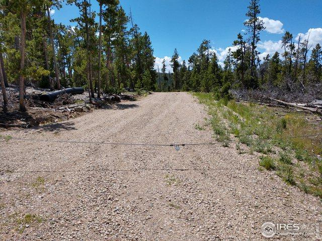 361 Manso Way, Red Feather Lakes, CO 80545 (#887618) :: James Crocker Team