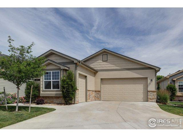 1503 Waterfront Dr, Windsor, CO 80550 (MLS #887748) :: Tracy's Team