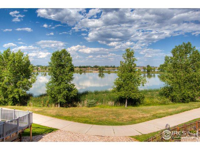 942 Durum Ct, Windsor, CO 80550 (MLS #887790) :: 8z Real Estate