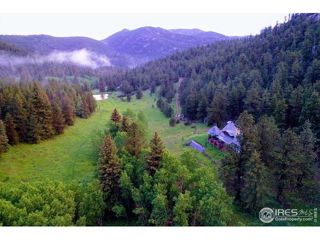 4333 Hell Canyon Rd, Estes Park, CO 80517 (MLS #887900) :: 8z Real Estate