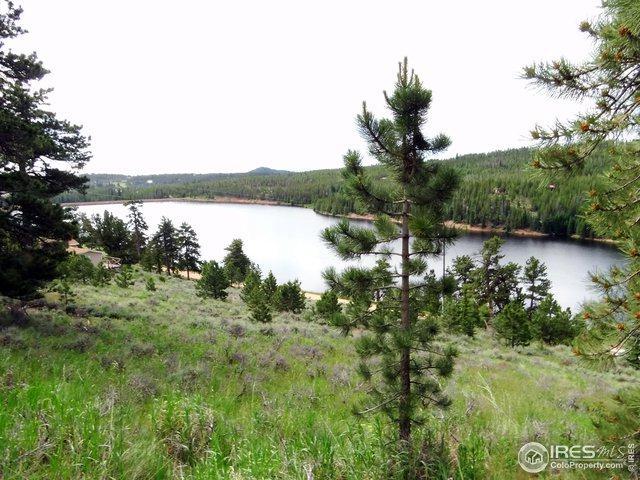 5920 Ottawa Way, Red Feather Lakes, CO 80545 (#888000) :: James Crocker Team