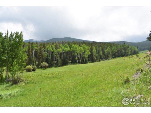 0 Buckhorn Rd, Bellvue, CO 80512 (MLS #888075) :: 8z Real Estate