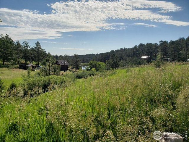 247 Chipmunk Pl, Drake, CO 80515 (MLS #888089) :: 8z Real Estate