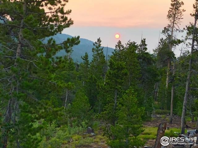 510 Carrier Way, Red Feather Lakes, CO 80545 (#888334) :: James Crocker Team