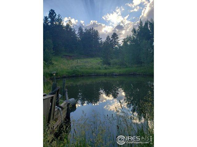 2415 Stove Prairie Rd, Bellvue, CO 80512 (MLS #888342) :: 8z Real Estate