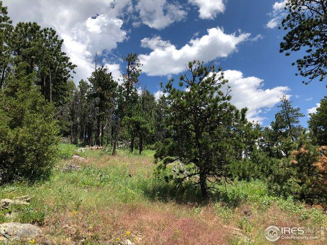 1300 Meadows Dr, Drake, CO 80515 (MLS #888455) :: J2 Real Estate Group at Remax Alliance