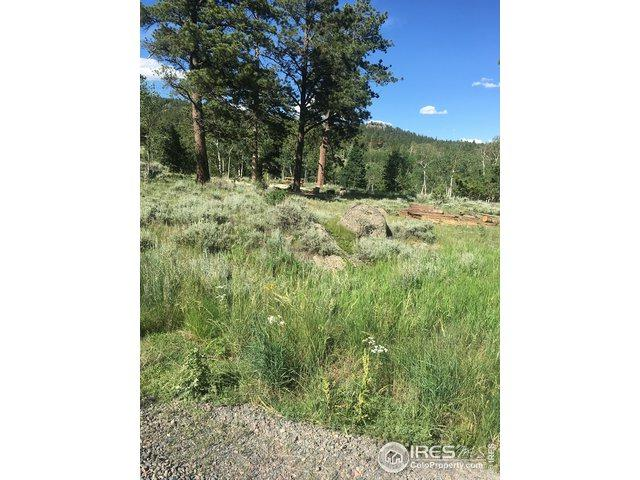 27 Cimarron Rd, Red Feather Lakes, CO 80545 (#888495) :: James Crocker Team