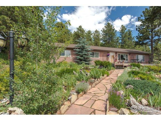 32147 Sylvan Rd, Golden, CO 80403 (MLS #888500) :: Tracy's Team