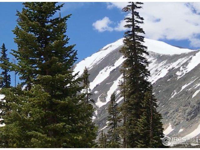 495 W Quandary View Dr, Breckenridge, CO 80424 (MLS #888647) :: 8z Real Estate