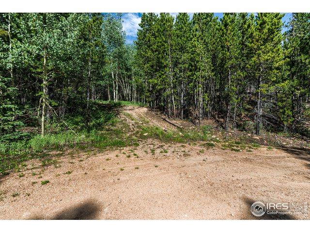 347 Mescalero Dr, Red Feather Lakes, CO 80545 (#888833) :: James Crocker Team