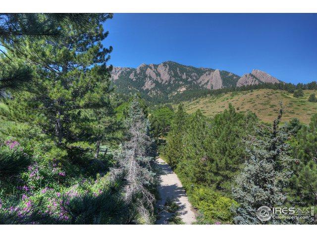 390 Hollyberry Ln, Boulder, CO 80305 (MLS #888850) :: 8z Real Estate