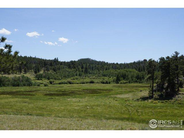Tbd County Road 86, Red Feather Lakes, CO 80545 (#888851) :: James Crocker Team