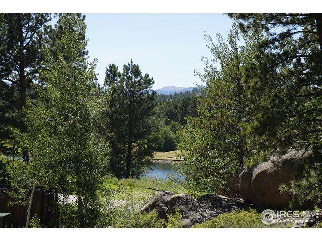 3090 Lake Arapahoe Ct, Red Feather Lakes, CO 80545 (MLS #888854) :: 8z Real Estate