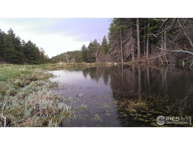 0 Rist Canyon Rd, Bellvue, CO 80512 (MLS #888924) :: Hub Real Estate