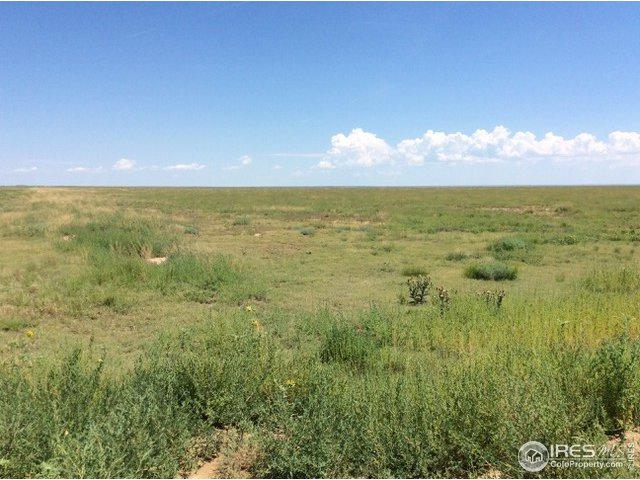 Sw Sec 32-18-52, Haswell, CO 81045 (MLS #888942) :: 8z Real Estate