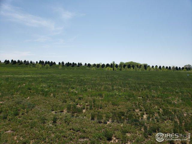3928 Vale View Ln, Mead, CO 80542 (MLS #888955) :: Kittle Real Estate