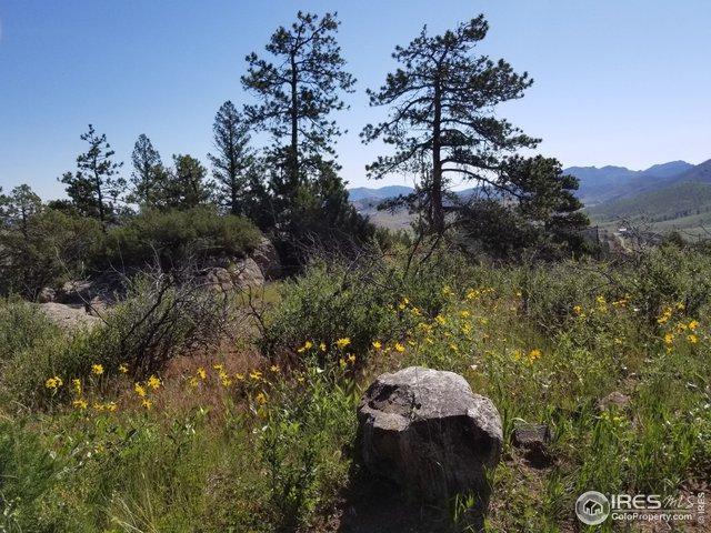 1054 Montcalm Dr, Livermore, CO 80536 (MLS #889037) :: Hub Real Estate
