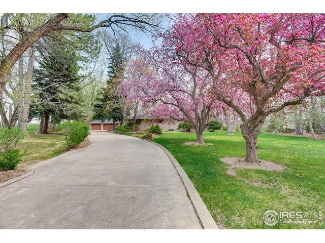 6501 Ute Hwy, Longmont, CO 80503 (MLS #889152) :: 8z Real Estate
