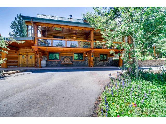 625 N Beaver Rd, Nederland, CO 80466 (MLS #889227) :: J2 Real Estate Group at Remax Alliance