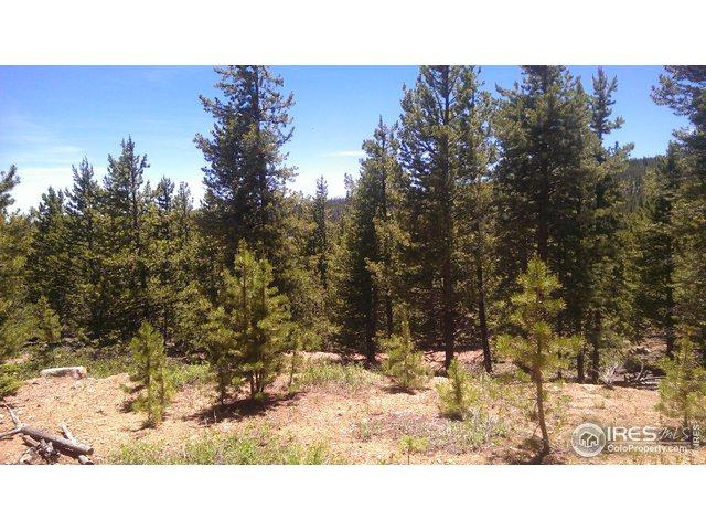 79 Cheyenne Ct, Red Feather Lakes, CO 80545 (MLS #889515) :: Kittle Real Estate