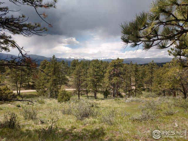 544 Arikaree Peak Dr, Livermore, CO 80536 (MLS #890018) :: Re/Max Alliance