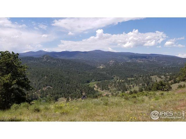 1330 Crow, Red Feather Lakes, CO 80545 (MLS #890173) :: Kittle Real Estate