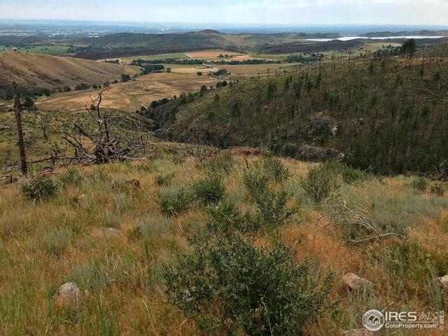 0 Whale Rock Rd, Bellvue, CO 80512 (MLS #890430) :: 8z Real Estate