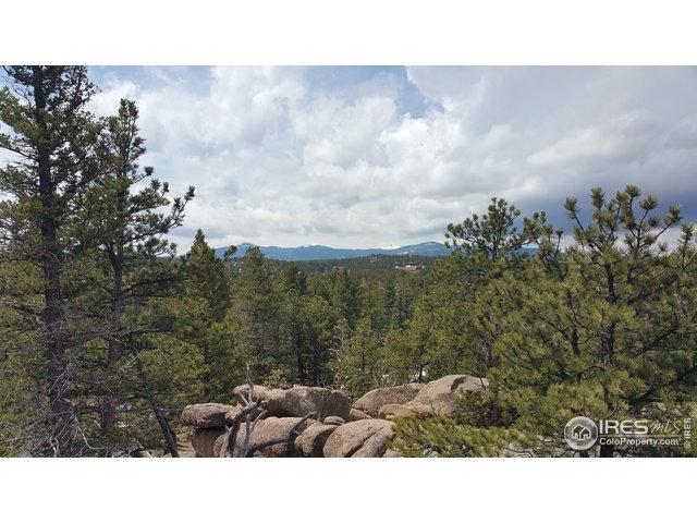 2928 Fox Acres Dr, Red Feather Lakes, CO 80545 (MLS #890500) :: 8z Real Estate