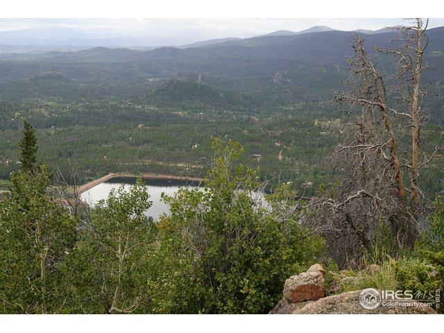 1495 Jicarilla Trl, Red Feather Lakes, CO 80545 (MLS #890770) :: Kittle Real Estate