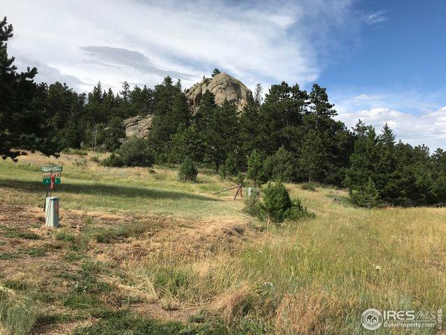 203 Mount Elbert Ct, Livermore, CO 80536 (MLS #890947) :: Re/Max Alliance