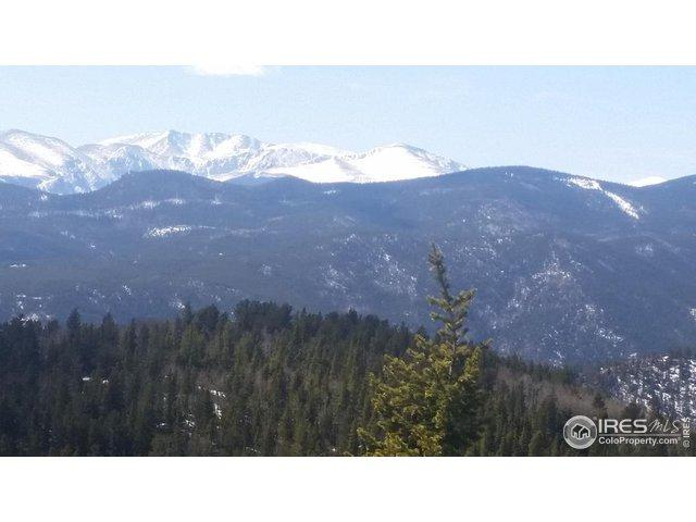 0 Bald Mountain And York Gulch Rds, Idaho Springs, CO 80452 (MLS #890958) :: 8z Real Estate