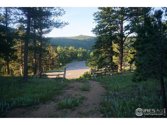 19815 Highway 7, Lyons, CO 80540 (MLS #890959) :: 8z Real Estate