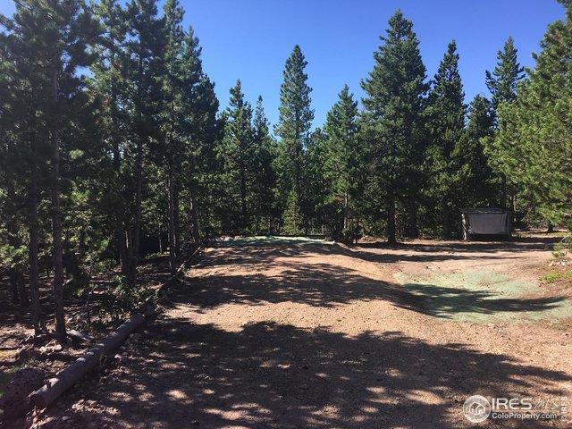 101 Axtupi Ct, Red Feather Lakes, CO 80545 (MLS #891185) :: Kittle Real Estate