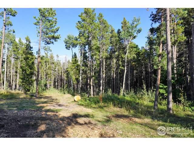0 Storm Mountain Dr, Drake, CO 80515 (MLS #894056) :: 8z Real Estate
