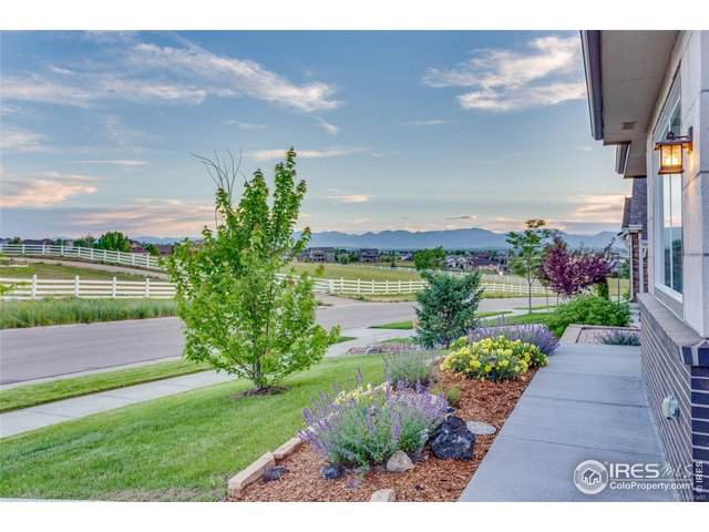 1281 Single Tree Ln, Erie, CO 80516 (MLS #894238) :: 8z Real Estate