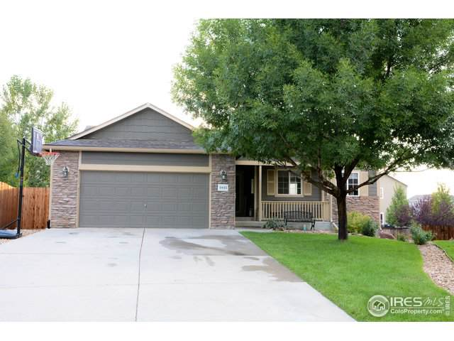 1811 88th Ave, Greeley, CO 80634 (MLS #894296) :: June's Team