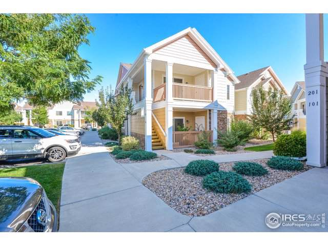 4855 Hahns Peak Dr #204, Loveland, CO 80538 (MLS #894327) :: June's Team
