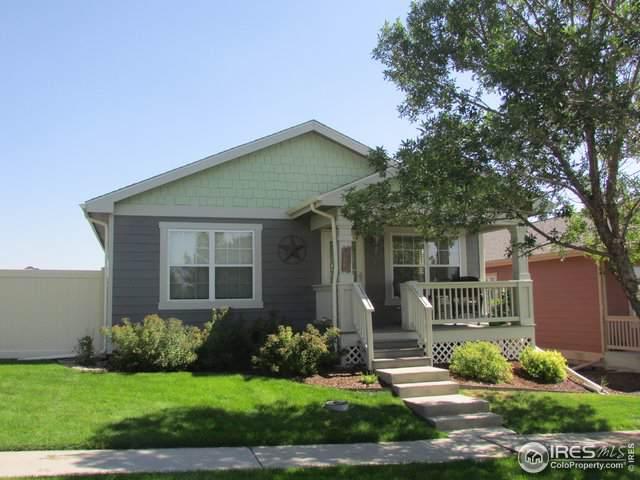 4212 Paintbrush Dr, Evans, CO 80620 (MLS #894371) :: 8z Real Estate