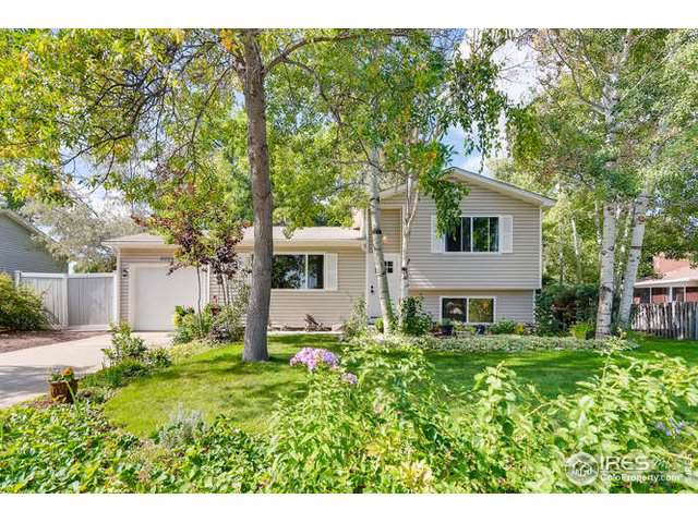 6005 Neptune Dr, Fort Collins, CO 80525 (MLS #894526) :: Hub Real Estate