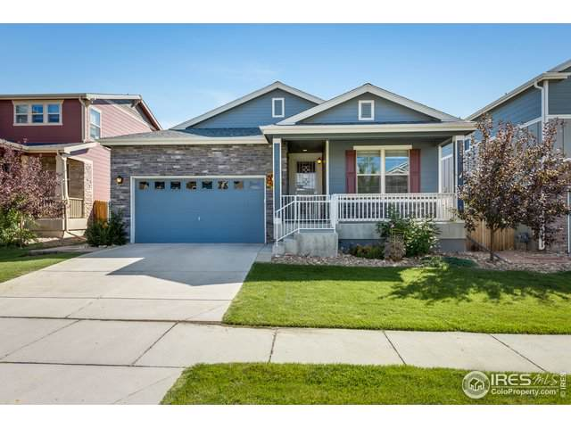 6966 Isabell St, Arvada, CO 80007 (MLS #894645) :: Kittle Real Estate