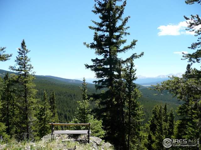 Tbd Forest Service 731 Rd, Red Cliff, CO 81649 (MLS #894655) :: 8z Real Estate
