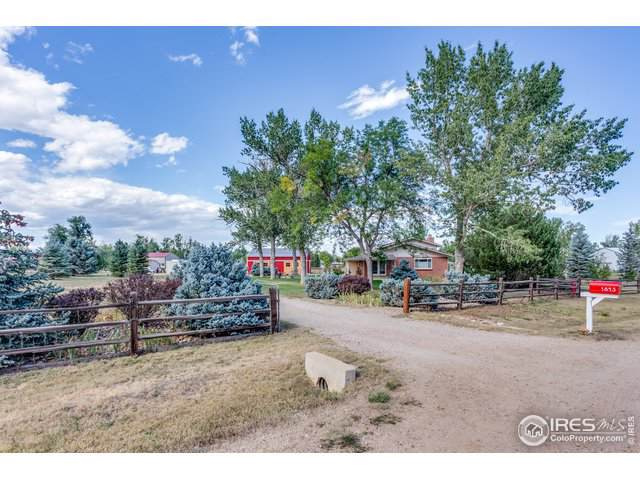 1843 Pikes Peak St, Erie, CO 80516 (MLS #894759) :: Colorado Home Finder Realty